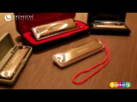 musberry---harmonica