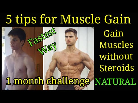 Fastest Way To Gain Muscle Best Tips For Muscle Gain How To Gain Muscles Without Steroids Youtube