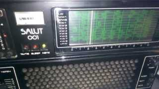 Ebay Test : DDR Transistorradio SALUT 001 / Weltempfänger