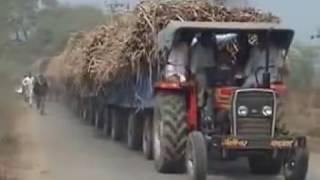 Massey Ferguson 241  42 Hp tractor 12 trolly Sugarcane 200000 kg Weight Live Open Challenge