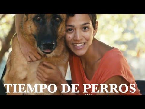 TIEMPO DE PERROS