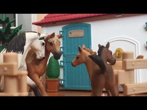 """7 years"" Schleich Music Video by Lukas Graham"