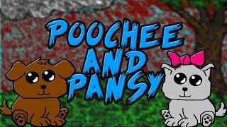 Poochee and Pansy Analysis