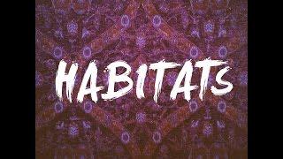 Habitats - Boogie Waltzer