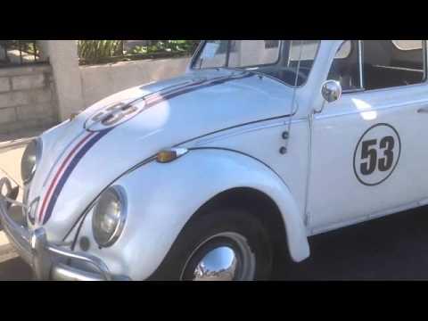 """1964 VW Beetle Bug """"Herbie 53"""" The People's car"""