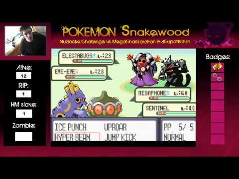 Pokemon snakewood what to do after elite four