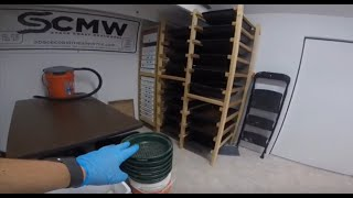 SCMW Mealworm Farm Tour and Weekly Maintenance Routine