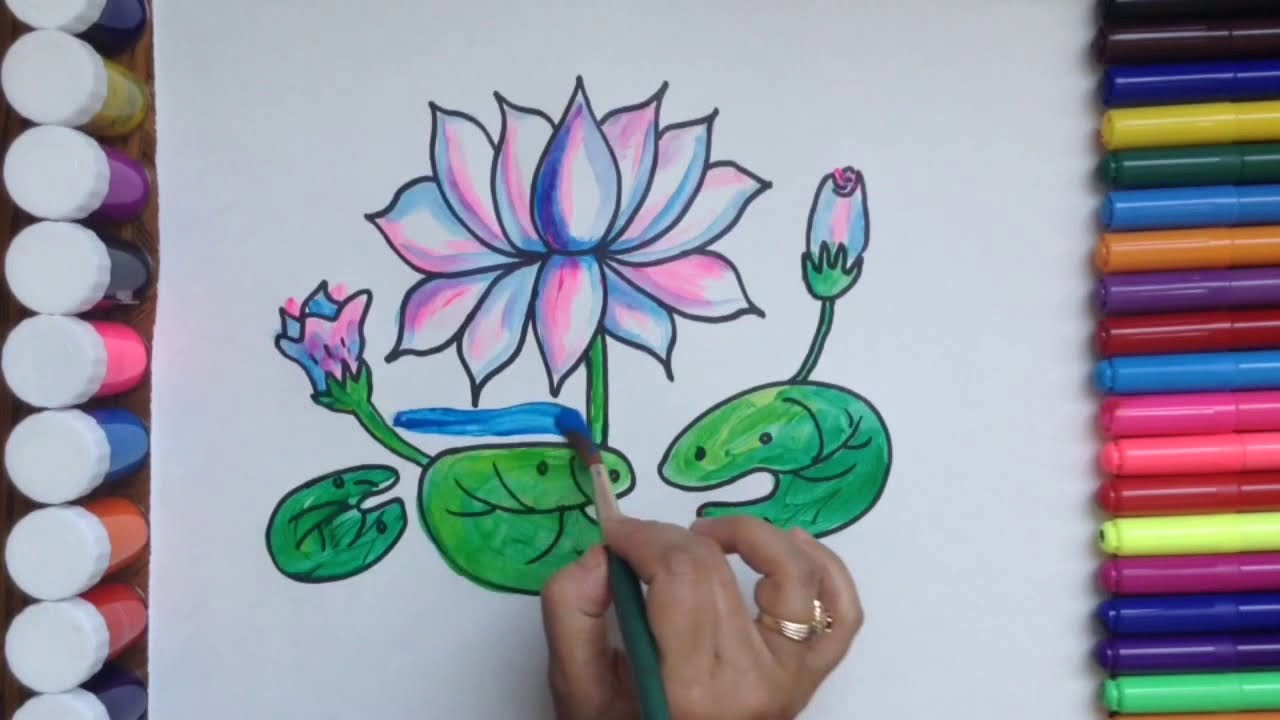 How To Draw And Colour Flower Drawing And Colouring Lotus For Kids