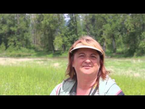Gibbons Creek Wildlife Art Trail: Steigerwald Lake National Wildlife Refuge / Washington