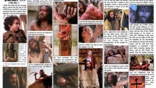 The Sacrifice Lamb