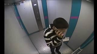 Лифт и два гамадрила