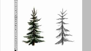 Draw a Pine tree in Photoshop