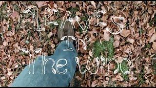 Leaves in the Wind - ROBERTO RICCO' & DANIELA SPADINI (ORIGINAL  MUSIC)