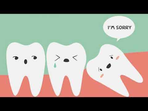 Как долго растет зуб мудрости у взрослых