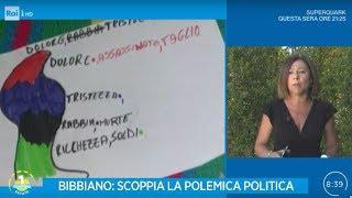 Caso Bibbiano: parla il vicesegretario del PD Paola De Micheli - Unomattina Estate 24/07/2019
