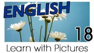 Learn English - English Plants Vocabulary