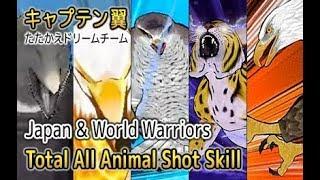 Captain Tsubasa Dream Team - Total All Animal Skill