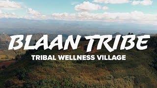 Blaan- Tribal Wellness Village   Polomolok, South Cotabato
