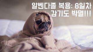「알벤다졸 복용: 8일차」감기마저 잠재우다!!