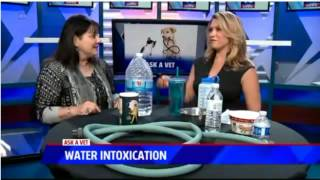 Dangers of Water Intoxication - Ask a Vet with Dr. Jyl