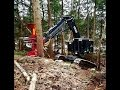 TimberPro TL745C Cutting Large White Pines on a Steep Hillside