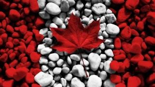 Канада сегодня - Природа и развитие страны