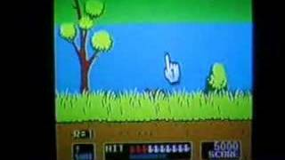 Duck Hunt on Nintendo Wii