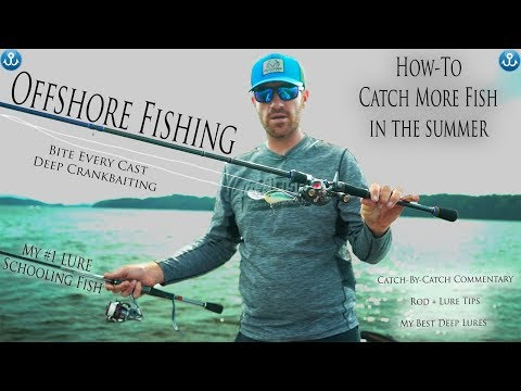 Catching Deep Schooling Bass - Offshore Fishing Tips