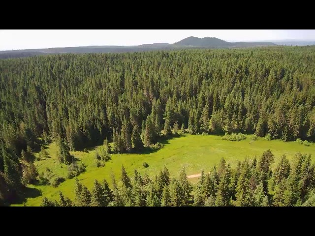 240 acres of Privacy, Orofino Idaho