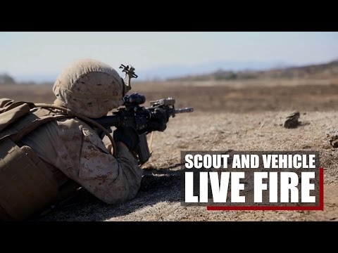 Live Fire Training | 1st MARDIV trains for the fight