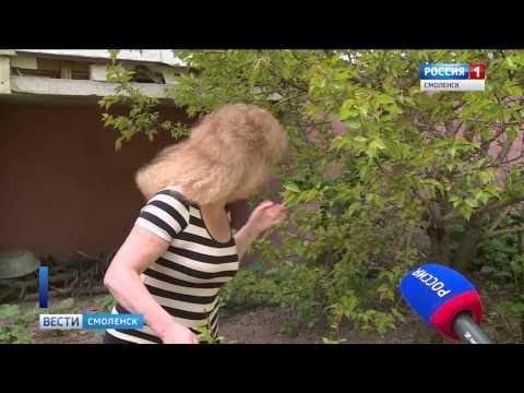 Жительница смоленской многоэтажки разбила под окнами… огород!