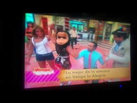 Raquel bigorra enseña Todo programa en vivo