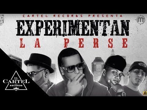 Daddy Yankee Ft. Farruko Benni Benny Gotay Pusho - Experimentan La Perse [Official Audio]
