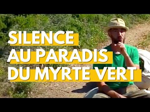 Silence au paradis du myrte vert !