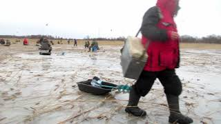 ICEFISHING PERCH Зимняя рыбалка на Ладоге в поселке Черное 7 января 2020 года