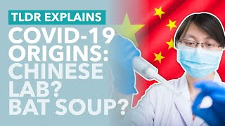 Where Did COVID-19 Come From... Chinese Lab? Bats? Wet Markets? - TLDR News