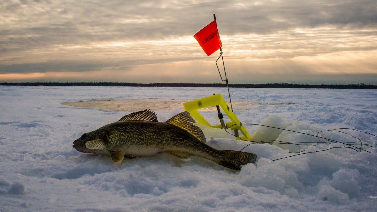 walleye ice fishing red lake mn january 8 11 2015 youtube