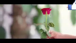 Love you meri janu I miss you