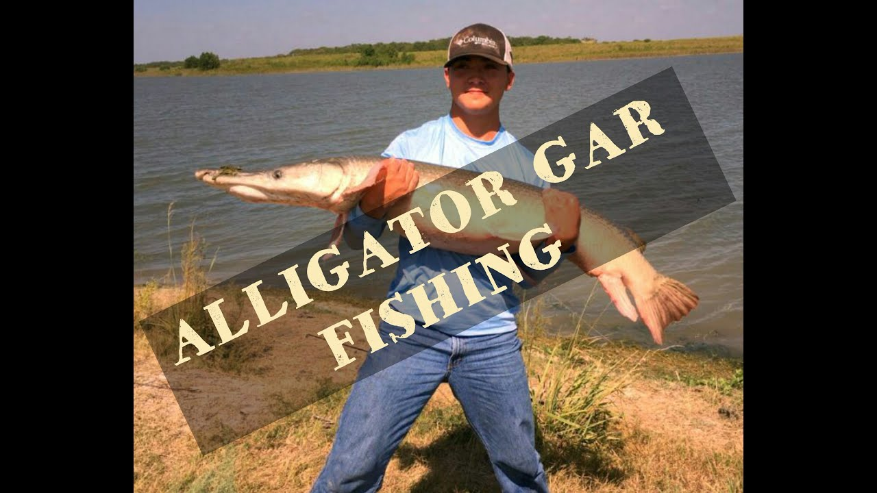 Fishing choke canyon alligator gar fishing youtube for Choke canyon fishing report