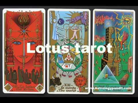 Lotus Tarot Best Tarot Card Readers For Lotus Tarot Online