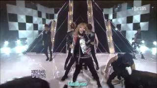 2NE1 - I Am The Best Live Fanchant HD