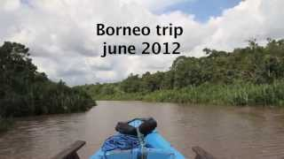 Paul and Tina - trip to Borneo to see Orangutans at Camp Leakey