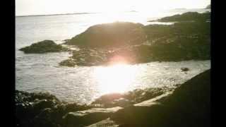 SARAH MCLACHLAN - I Will Remember You (Original Version)