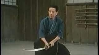 Нукицукэ но кэн