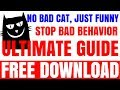Super Funny Cats Videos Compilation 111 | NINJA CATS! There's absolutely NOTHING MORE FUNNY!  -