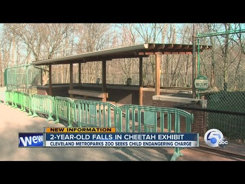 2-year-old in stable condition after falling into...