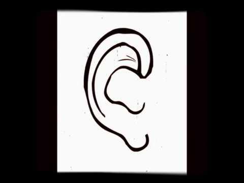 Extremely Loud Dog Whistle Youtube