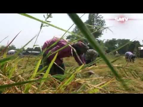 Bangladesh local Government Discrimination