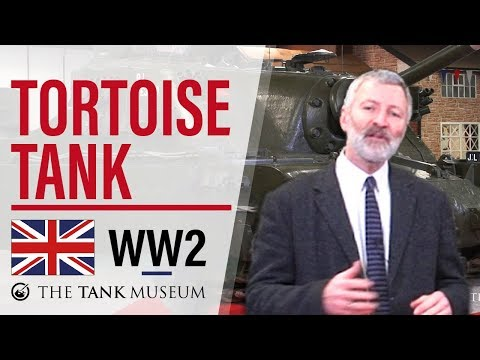 Tank Chats #15 Tortoise