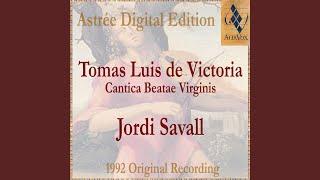 Cantica Beatae Virginis - Antiphon Ave Regina Caelorum, For 5 Voices (1572)